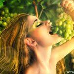 5 Lý do bạn nên chọn ăn nho mỗi ngày