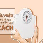 4 Dấu hiệu cho thấy bạn đang giảm cân sai cách