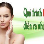 Quá trình lão hóa da của bạn diễn ra như thế nào?