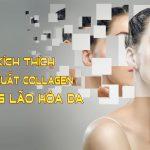 4 cách kích thích sản xuất collagen cho da lão hóa
